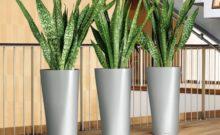lechuza delta planter