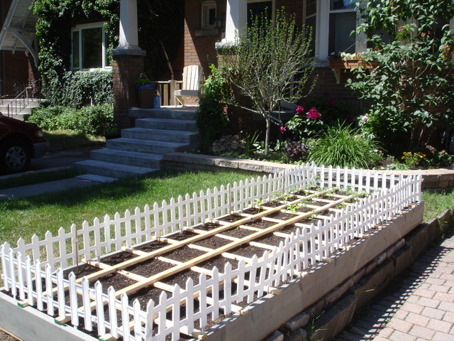 Extra Large Raised Bed2