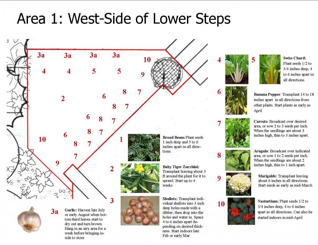 Edible Landscaping Sample3
