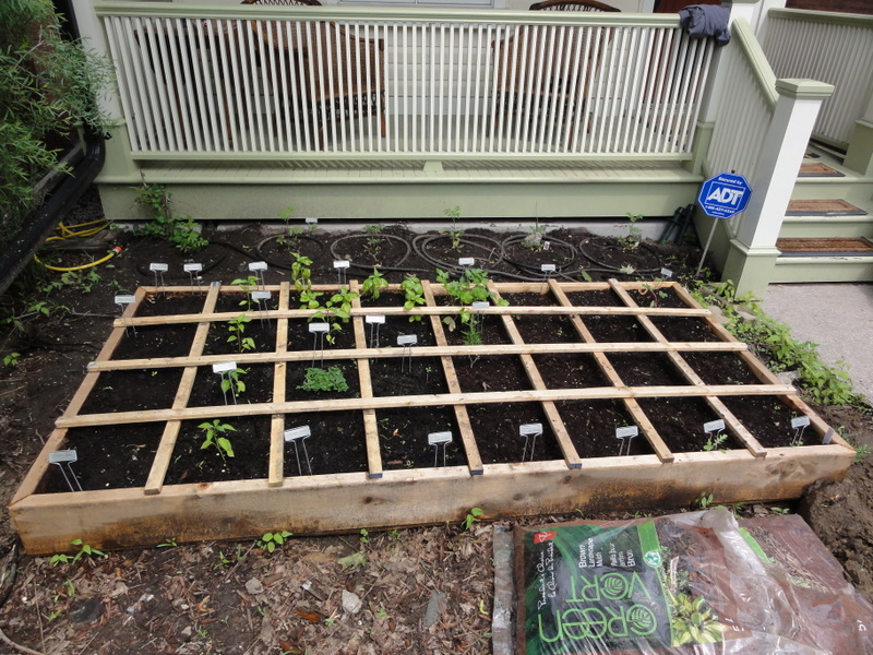 4x8Raised Bed