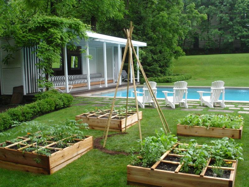 YUF Backyard Garden
