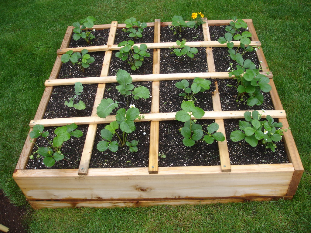 garden hemlock planks raised bed x product