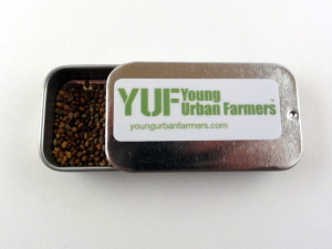 YUF Superfood Seeds Italian Dandelion