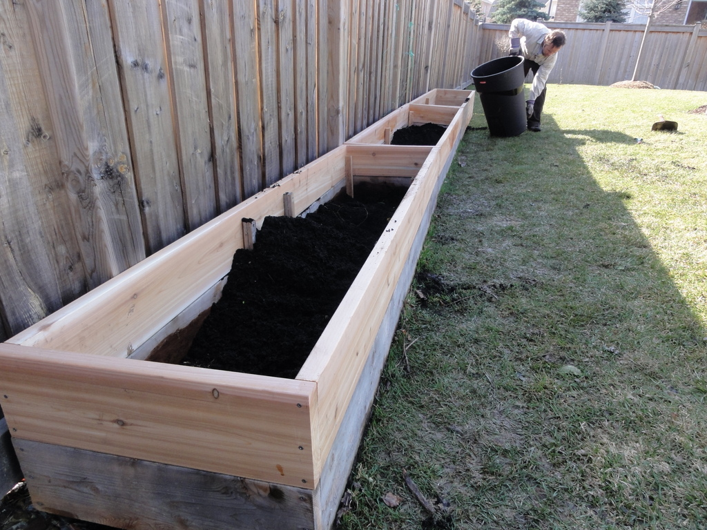 "2x8 Raised Beds @ 8"" Tall During Conversion"