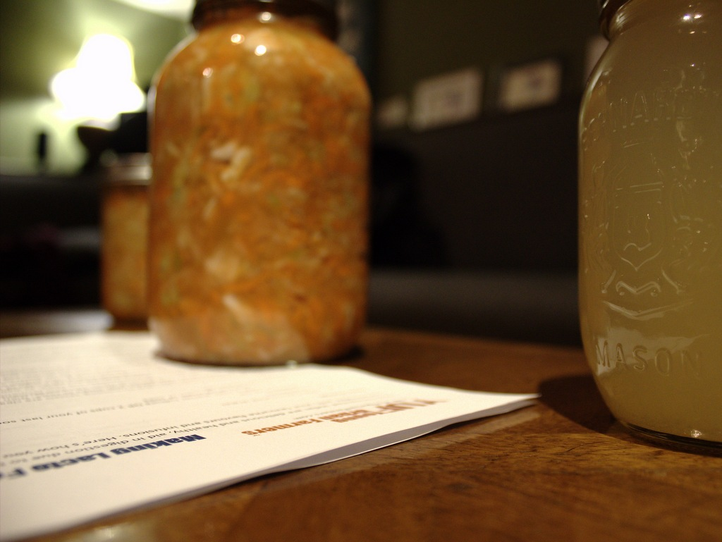 fermentation workshop
