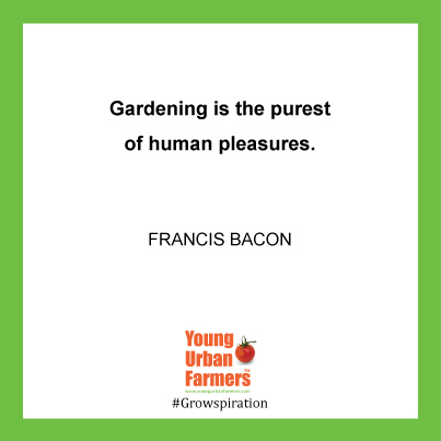 """Gardening is the purest of human pleasures."" - Francis Bacon"