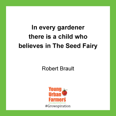In every gardener there is a child who believes in The Seed Fairy - Robert Brault