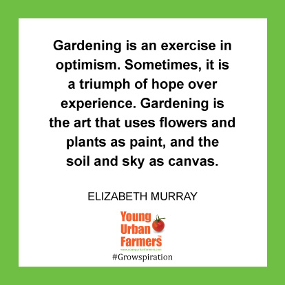 Gardening is an exercise in optimism. Sometimes, it is a triumph of hope over experience. Gardening is the art that uses flowers and plants as paint, and the soil and sky as canvas. -Elizabeth Murray