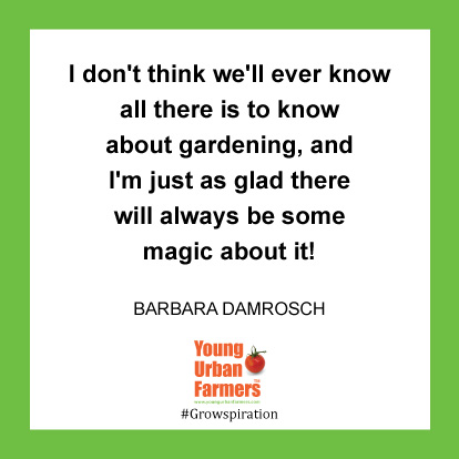 I don't think we'll ever know all there is to know about gardening, and I'm just as glad there will always be some magic about it! -Barbara Damrosch