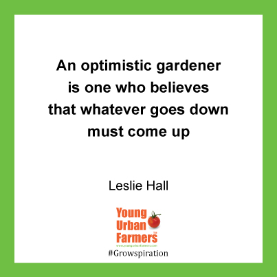 An optimistic gardener is one who believes that whatever goes down must come up - Leslie Hall
