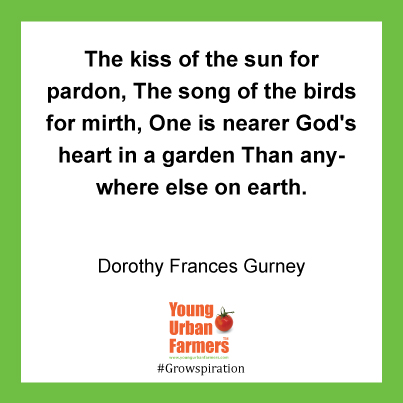 "The kiss of the sun for pardon, The song of the birds for mirth, One is nearer God's heart in a garden Than anywhere else on earth. ~Dorothy Frances Gurney, ""Garden Thoughts"""