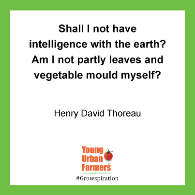 Shall I not have intelligence with the earth?  Am I not partly leaves and vegetable mould myself. -  Henry David Thoreau