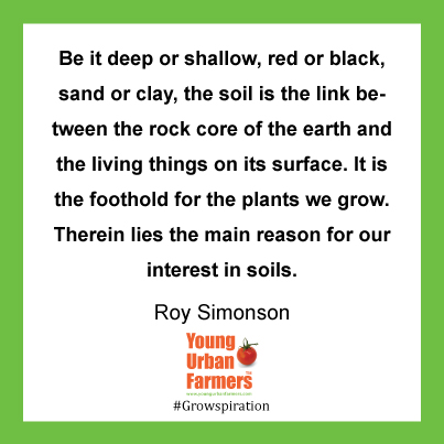 Be it deep or shallow, red or black, sand or clay, the soil is the link between the rock core of the earth and the living things on its surface. It is the foothold for the plants we grow. Therein lies the main reason for our interest in soils. ~Roy Simonson,USDA Yearbook of Agriculture, 1957