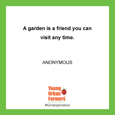 """A garden is a friend you can visit any time."" - Anon"