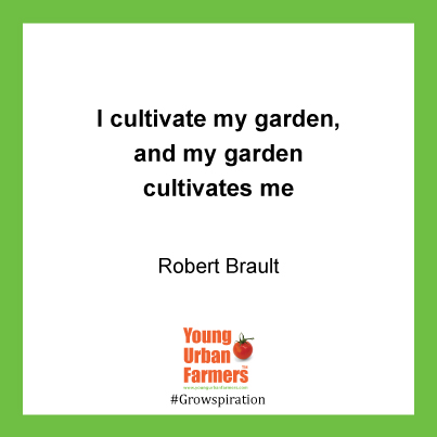 I cultivate my garden, and my garden cultivates me. - Robert Brault,