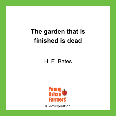 """""""The garden that is finished is dead."""" - H. E. Bates"""