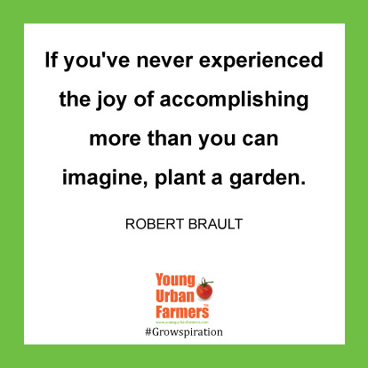If you've never experienced the joy of accomplishing more than you can imagine, plant a garden. -Robert Brault