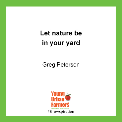 Let nature be in your yard. - Greg Peterson