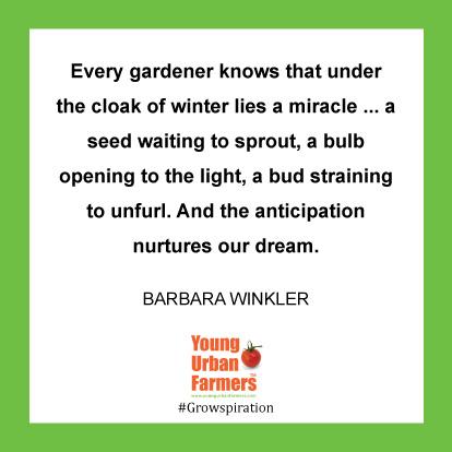 YUF Garden Quote Feb 21