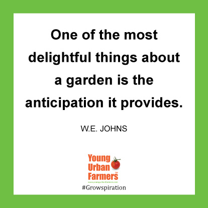 One of the most delightful things about a garden is the anticipation it provides. -W.E. Johns