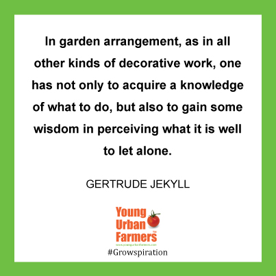 In garden arrangement, as in all other kinds of decorative work, one has not only to acquire a knowledge of what to do, but also to gain some wisdom in perceiving what it is well to let alone. Gertrude Jekyll