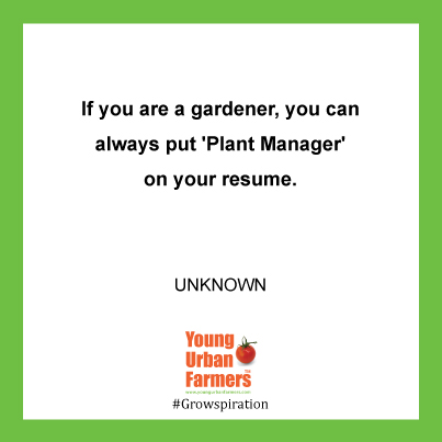 If you are a gardener, you can always put 'Plant Manager' on your resume. Unknown