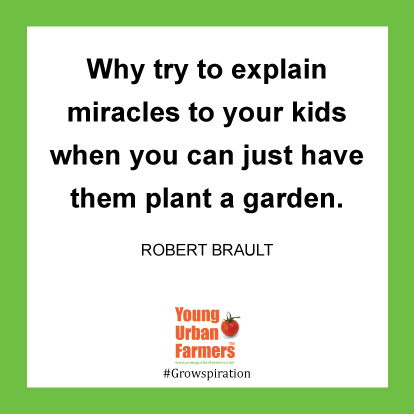 Why try to explain miracles to your kids when you can just have them plant a garden. -Robert Brault