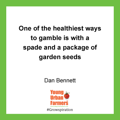 One of the healthiest ways to gamble is with a spade and a package of garden seeds - Dan Bennett