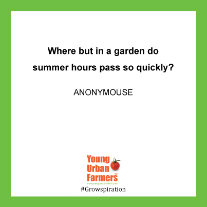 """Where but in a garden do summer hours pass so quickly?"" - Anon"