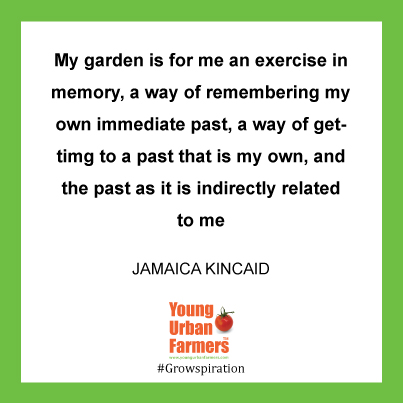 """my garden is for me an exercise in memory, a way of remembering my own immediate past, a way of gettimg to a past that is my own, and the past as it is indirectly related to me"", jamaica kincaid"
