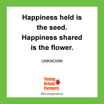 Happiness held is the seed. Happiness shared is the flower. -Unknown