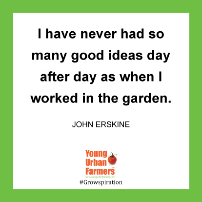I have never had so many good ideas day after day as when I worked in the garden.  -John Erskine