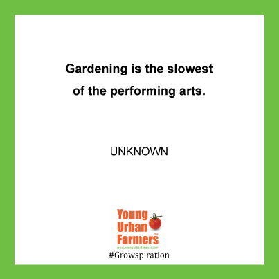 Gardening is the slowest of the performing arts. --Author Unknown