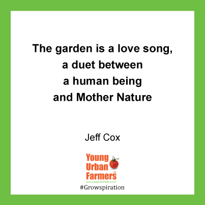 The garden is a love song, a duet between a human being and Mother Nature - Jeff Cox