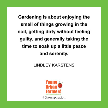 Gardening is about enjoying the smell of things growing in the soil, getting dirty without feeling guilty, and generally taking the time to soak up a little peace and serenity. -Lindley Karstens