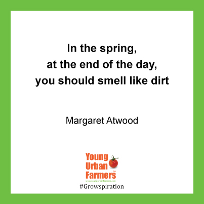 In the spring, at the end of the day, you should smell like dirt - Margaret Atwood