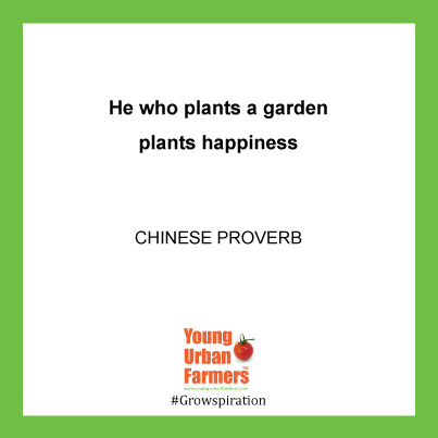 """He who plants a garden plants happiness."" - Chinese Proverb"