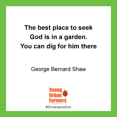 The best place to seek God is in a garden. You can dig for him there - George Bernard Shaw,