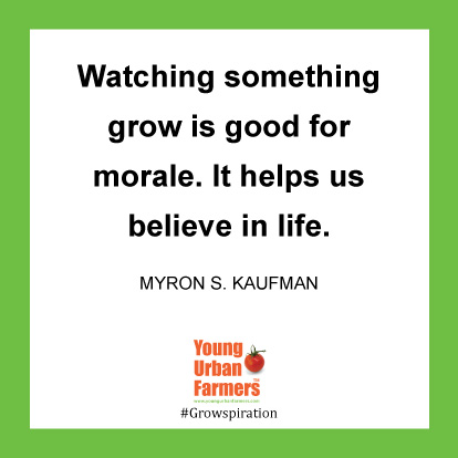 Watching something grow is good for morale. It helps us believe in life. -Myron S. Kaufman
