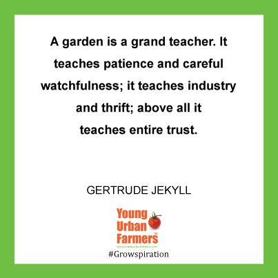 A garden is a grand teacher. It teaches patience and careful watchfulness; it teaches industry and thrift; above all it teaches entire trust. Gertrude Jekyll