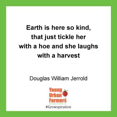 Earth is here so kind, that just tickle her with a hoe and she laughs with a harvest - Douglas William Jerrold
