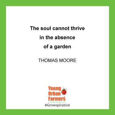 """The soul cannot thrive in the absence of a garden"" Thomas Moore"