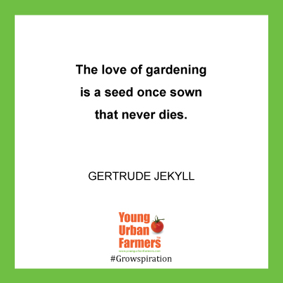 The love of gardening is a seed once sown that never dies. Gertrude Jekyll
