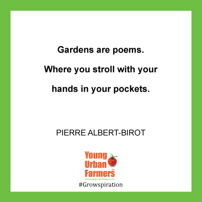 """Gardens are poems. Where you stroll with your hands in your pockets."" Pierre Albert-Birot"
