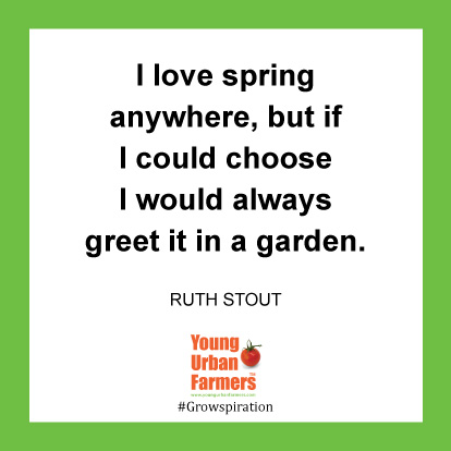 I love spring anywhere, but if I could choose I would always greet it in a garden. -Ruth Stout