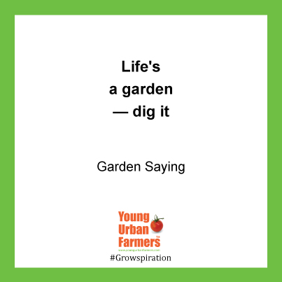 Life's a garden — dig it - Gardening Saying
