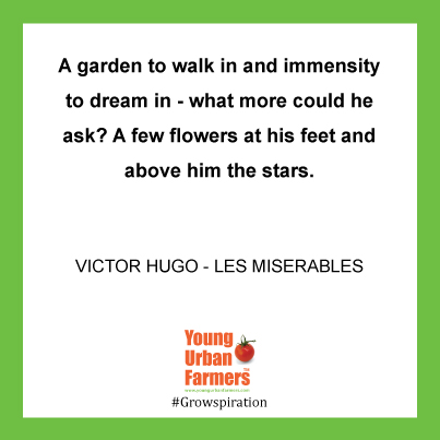 """A garden to walk in and immensity to dream in--what more could he ask? A few flowers at his feet and above him the stars.""  ― Victor Hugo, Les Misérables"