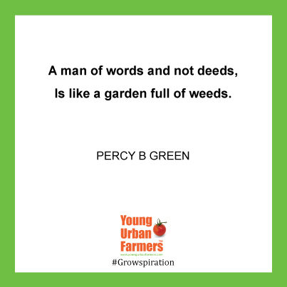 """A man of words and not deeds, Is like a garden full of weeds."" - Percy B Green"