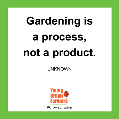 Gardening is a process, not a product. -Unknown