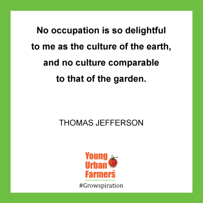No occupation is so delightful to me as the culture of the earth, and no culture comparable to that of the garden. - Thomas Jefferson